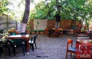verde-cafe4