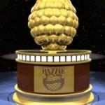 Nominalizarile pentru Zmeura de Aur 2010