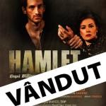 Hamlet, cu casa inchisa!