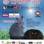 Martisorul Pisicilor – Expozitie Felina SofistiCAT