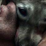 The ABCs of Death – Un film pentru care Oscarul e fier vechi